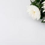 葬儀や葬式に供える花「供花」について。種類やマナーを紹介